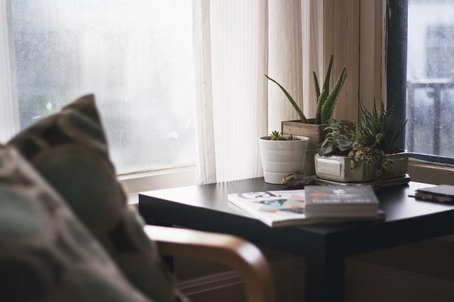 escritorio da casa com plantas